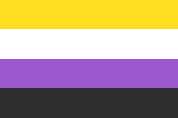 The nonbinary pride flag, with 4 horizontal stripes of yellow, white, purple and black in order from top to bottom.