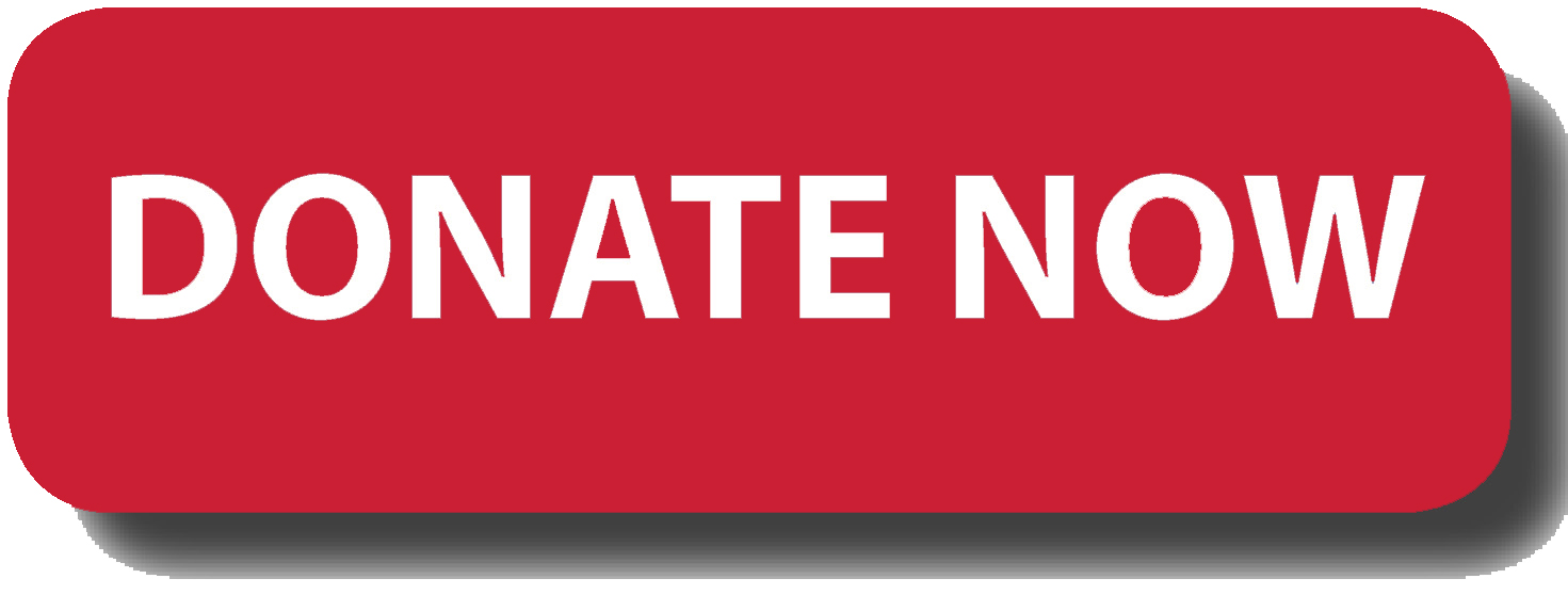 "Red ""Donate Now"" button"