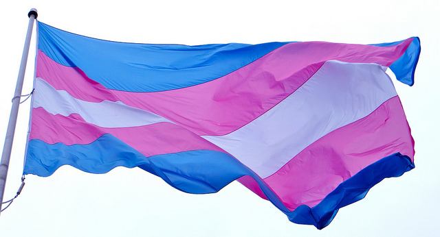 A transgender pride flag flies on a flagpole against a light blue background